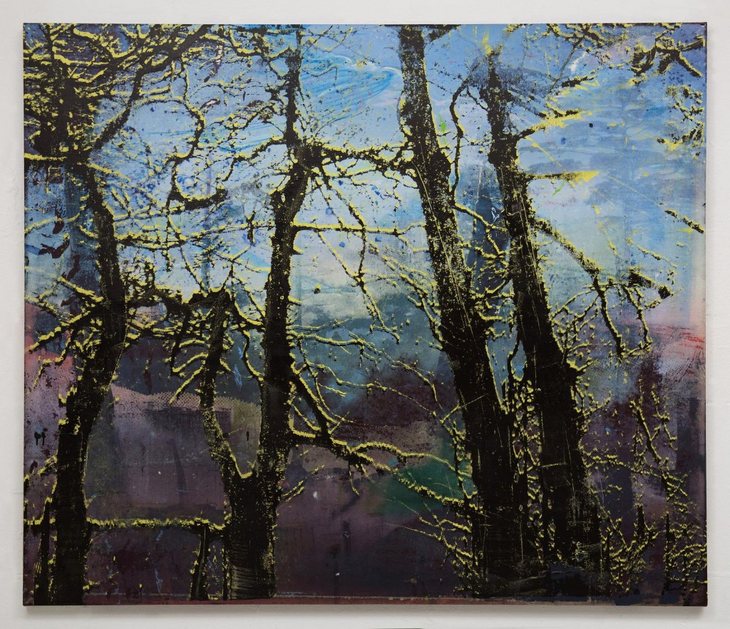 Elizabeth Magill, Anterior (1), 2017, oil and screenprint on canvas, 153 x 183 cm / 60.2 x 72 in